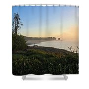 Into The Mist-ick Shower Curtain