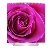 Into The Rose Shower Curtain