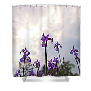 Into The Sky 3 Shower Curtain