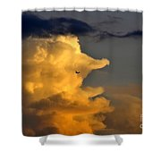 Into The Storm Shower Curtain