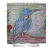 Into The Tropics The Philippine Kingfisher  Shower Curtain