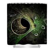 Into The Vortex Shower Curtain