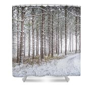Into The Woods 3 - Winter At Retzer Nature Center  Shower Curtain