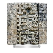 Intricate Details Of Mayan Ruins Shower Curtain