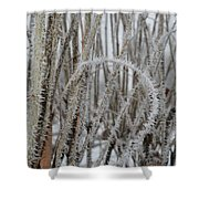 Intriguing Winter Frost Shower Curtain