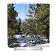 Intuitive Majesty Shower Curtain