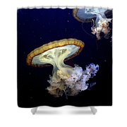 Invasion Of The Japanese Sea Nettles Shower Curtain