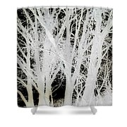 Inverted Nature Shower Curtain