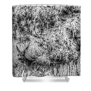 Invisible Nature One Mono  Shower Curtain