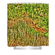 Invisible Nature One Surreal C Shower Curtain