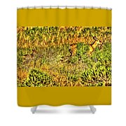 Invisible Nature Three Surreal C Shower Curtain