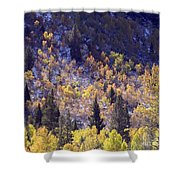 Inyo Aspens Shower Curtain
