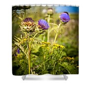 Iona Thistle Shower Curtain