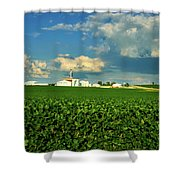 Iowa Soybean Farm Shower Curtain
