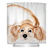 Ipo's Dream Shower Curtain