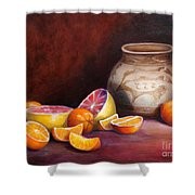 Iranian Still Life Shower Curtain