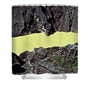 Irazu Volcano - Costa Rica Shower Curtain