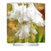Iris 42 Shower Curtain