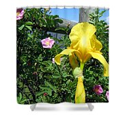 Iris And Wild Roses Shower Curtain