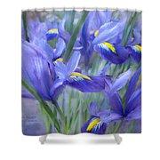 Iris Bouquet Shower Curtain
