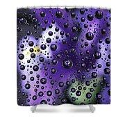 Iris Bubbles Shower Curtain