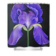 Iris Shower Curtain
