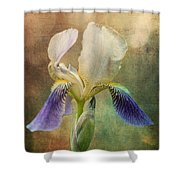 Iris Composite Shower Curtain