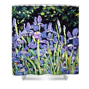 Iris En Folie Shower Curtain
