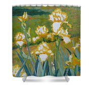 Iris Etude Shower Curtain
