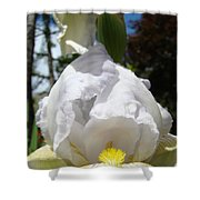 Iris Flower Art Print Canvas Friendship Park Mercy Medical Center Shower Curtain