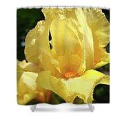 Iris Flower Floral Art Prints Orange Irises Shower Curtain