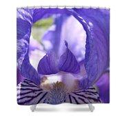 Iris Flower Purple Irises Floral Botanical Art Prints Macro Close Up Shower Curtain