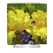 Iris Flowers Garden Art Yellow Irises Baslee Troutman Shower Curtain