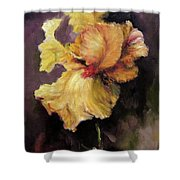 Iris Gold Shower Curtain