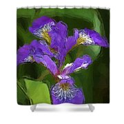 Iris II Shower Curtain