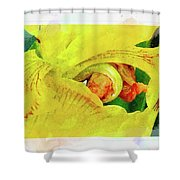 Iris In Abstract Shower Curtain