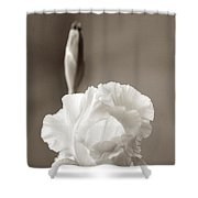 Iris In Black And White Shower Curtain