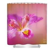 Iris In Mist Shower Curtain