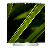 Iris Leaves Shower Curtain