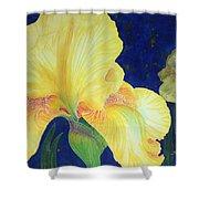 Iris Miami Beach Shower Curtain