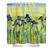 Iris On Parade Shower Curtain