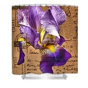 Iris On Vintage 1912 Postcard Shower Curtain