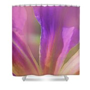 Iris Panorama Shower Curtain