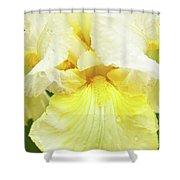 Iris Pride Of Ireland Shower Curtain