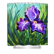 Iris Solo Shower Curtain