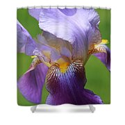 Iris Spirit Shower Curtain