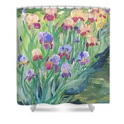 Iris Spring Shower Curtain