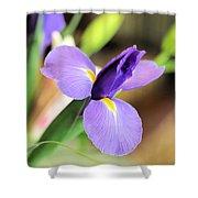 Iris Unfolding IIi Shower Curtain