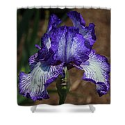 Iris Unraveled Shower Curtain