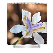 Iris Wide Open Shower Curtain